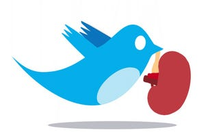 Illustration for article titled I Just Retweeted a Kidney