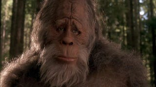 Illustration for article titled Geneticist claims to have sequenced 'Bigfoot' DNA