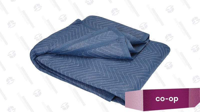 The Haul-Master Mover's Blanket costs all of $9, and is plenty big for several people. It's not pretty, but it does what you need a picnic blanket to do.