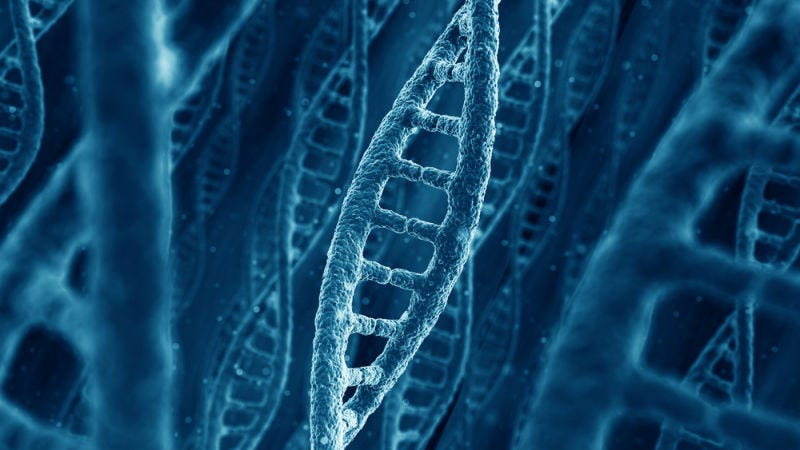 Illustration for article titled The Pentagon's Research Arm is Putting Money Into DNA Manufacturing