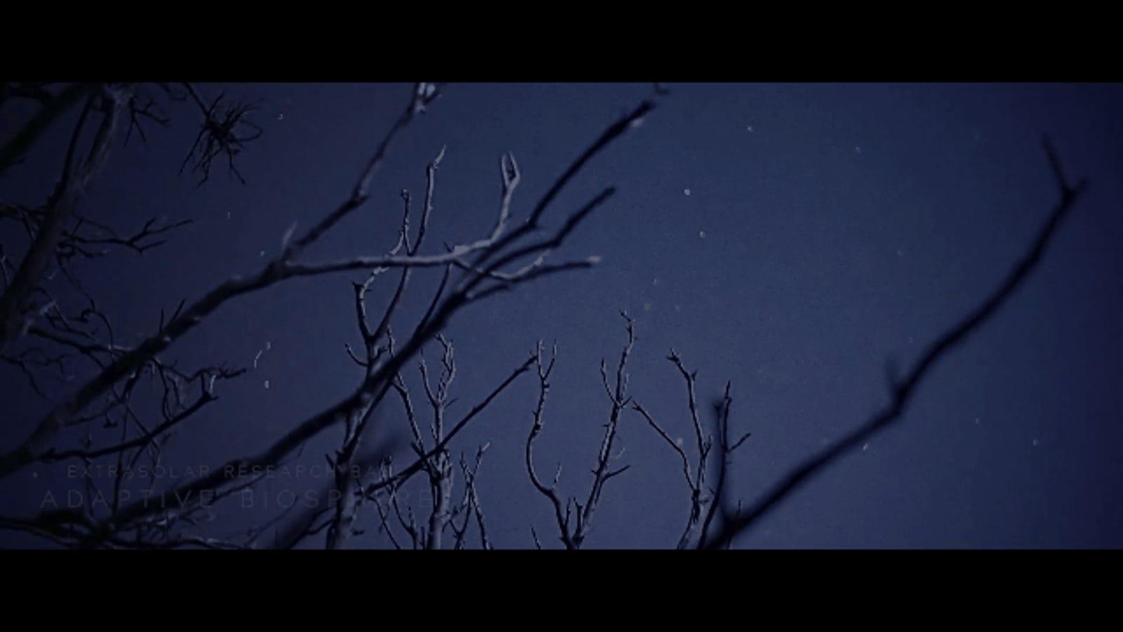 Intense Scifi Film Shot Entirely in Moonlight Looks Completely Alien