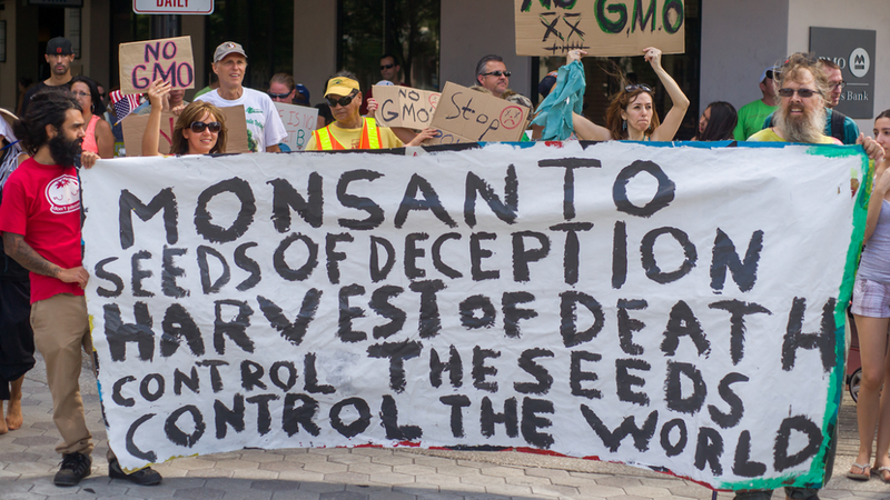 Illustration for article titled Could open-source GMOs bring down Monsanto at last?