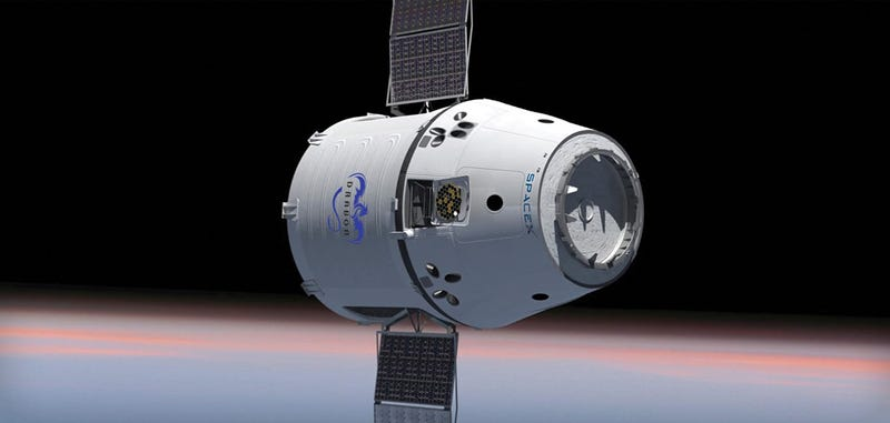 Illustration for article titled Report: Google's Finalizing a $1 Billion Investment in SpaceX Internet