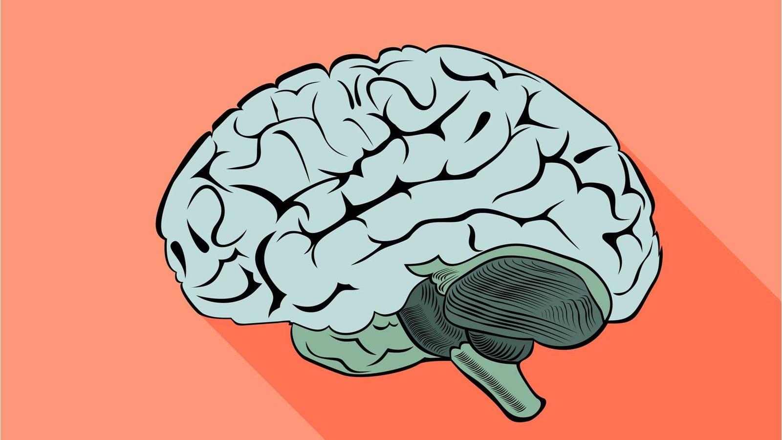 Por qué hacer ejercicio físico es bueno para tu cerebro