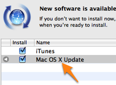 Illustration for article titled Apple Updates Snow Leopard to 10.6.1