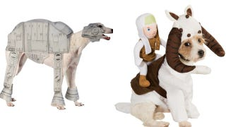Illustration for article titled Finally, your dog can get in on that sweet Star Wars cosplay action