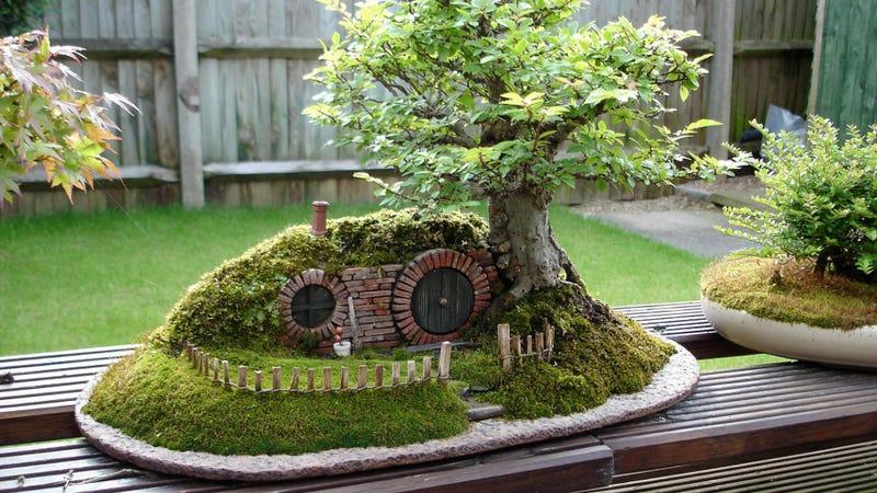 Illustration for article titled A Baggins Bonsai Fit For a Pocket-Sized Hobbit