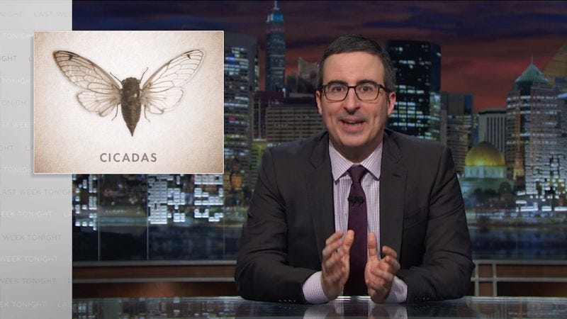 Illustration for article titled John Oliver helpfully gets cicadas up to speed on politics and pop culture