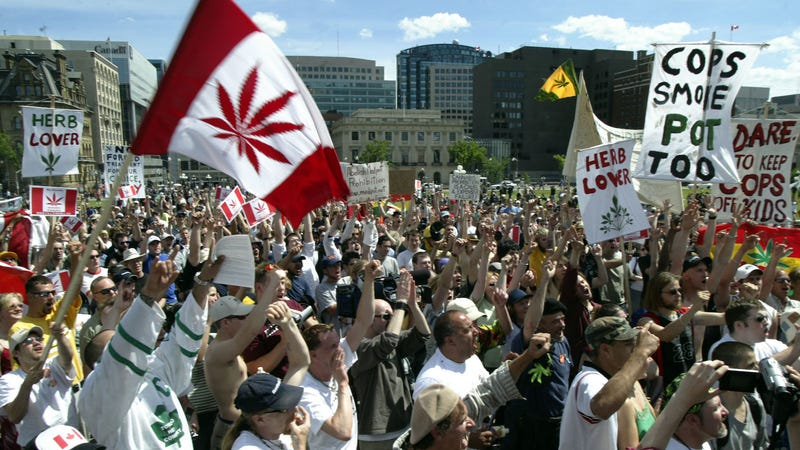 Around 1,000 protesters showed up for the Fill the Hill rally in support of legalizing marijuana on June 5, 2004 on Parliament Hill in Ottawa, Canada.