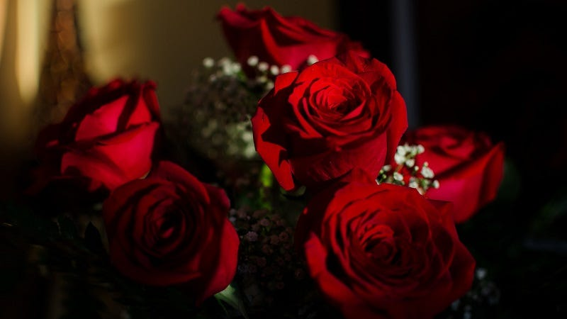 buy your valentine's day flowers early to save money, Beautiful flower