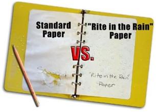 is p custom essay meister legit