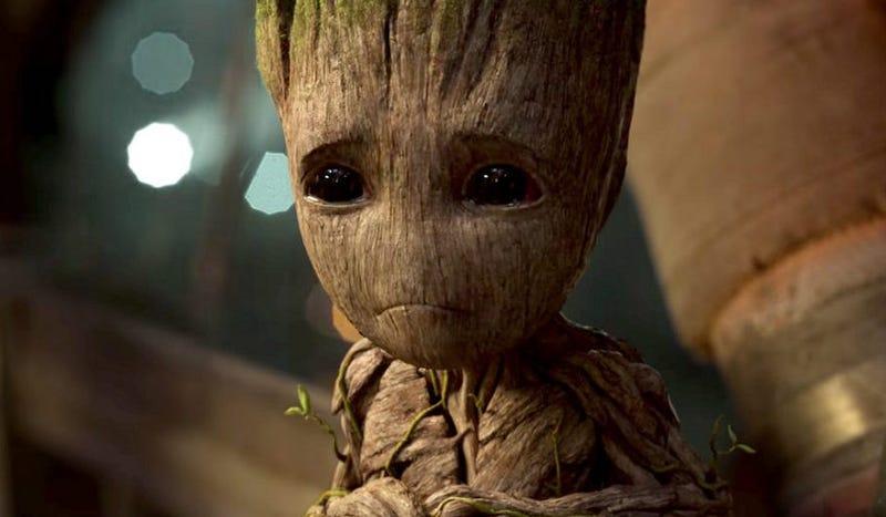 Illustration for article titled Qué dice un experto botánico sobre la controvertida biología de Groot, el árbol andante de Guardianes de la Galaxia