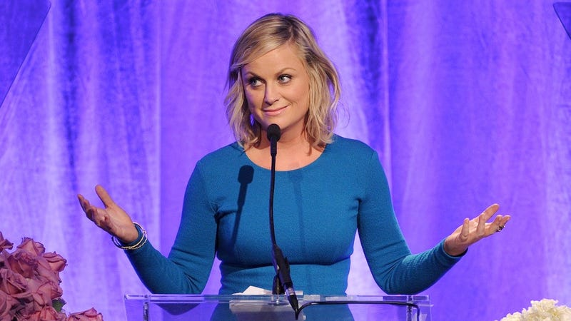 Illustration for article titled Amy Poehler and Her Brother Sold a Crazy-Sounding Sitcom to NBC
