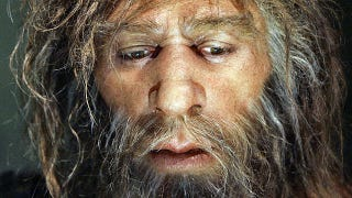 Illustration for article titled Modern humans are still carrying Neanderthal viruses