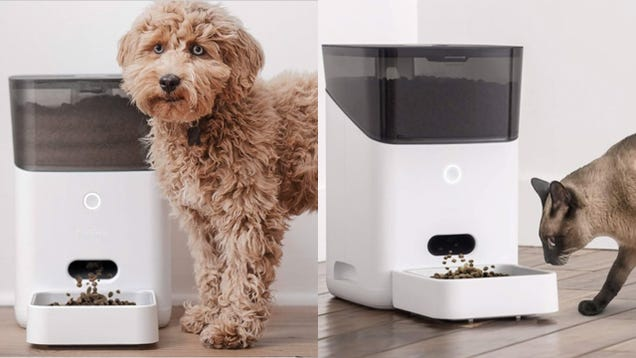 Get an Alexa-Enabled Automatic Pet Feeder For Only $85