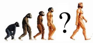 Illustration for article titled Evolution 101: The Missing Link FAQ