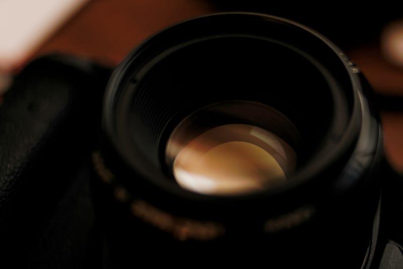 Illustration for article titled More 1D Mark II N Shots