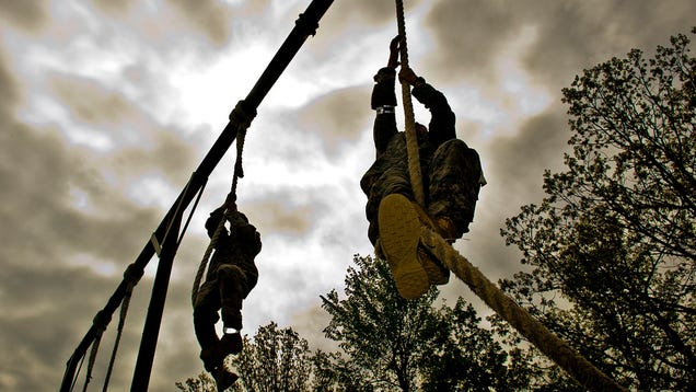 Conquer Your First Rope Climb With TheseIntermediary Exercises