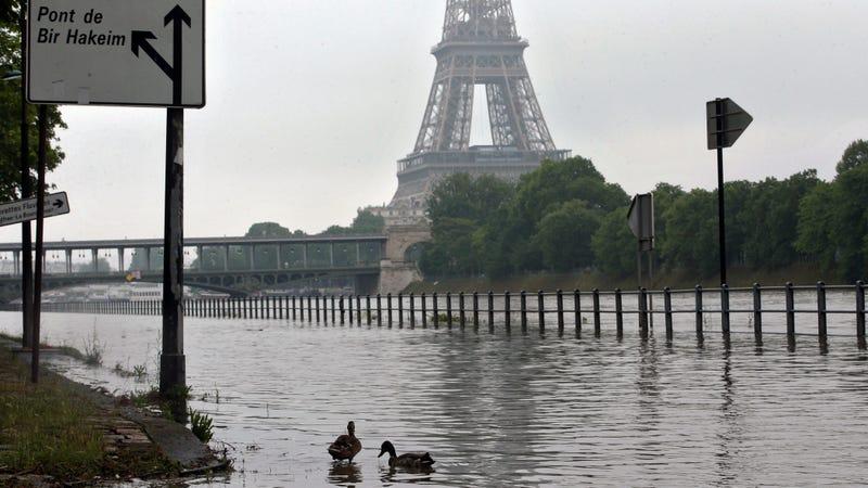 Image: AP / Thibault Camus