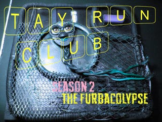Illustration for article titled TAY Run Club Season 2:  The Furbacolypse