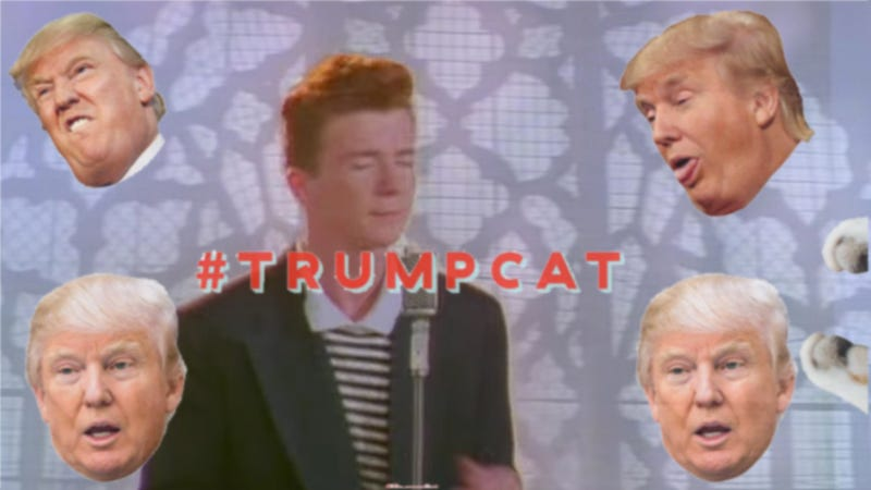 Image: screengrabs via YouTube and Kittenfeed