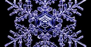 Illustration for article titled This Physicist Makes Dazzling Snowflakes in his Laboratory