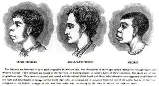 Illustration for article titled Ancestry, Race, and Forensic Anthropology