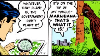 Illustration for article titled Mark Trail versus the marijuana farmers is the new greatest comic strip of all time