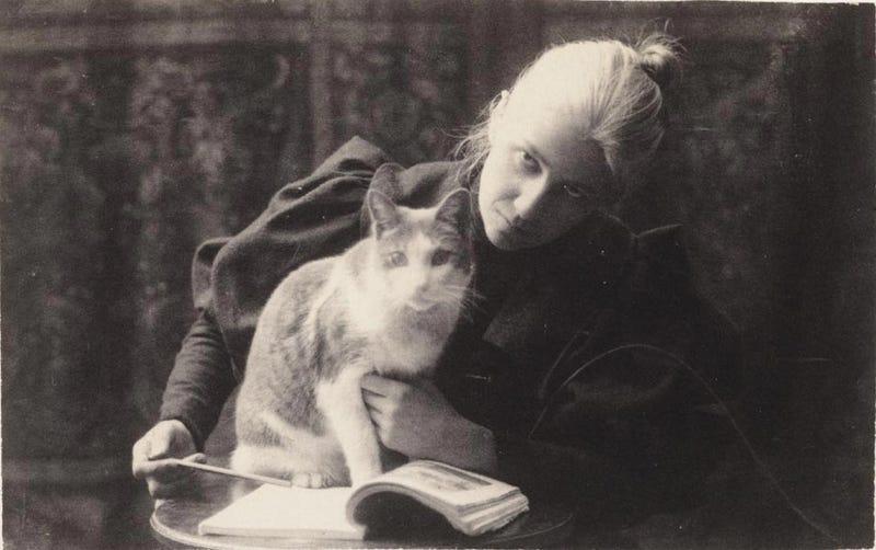 Illustration for article titled Amelia Van Buren and her cat