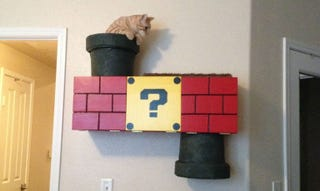 Illustration for article titled No Cat Should Be Without A Mario Warp Pipe Climbing Box