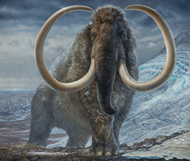 Unprecedented Study of a Single Woolly Mammoth Shows Where It Roamed From Birth to Death