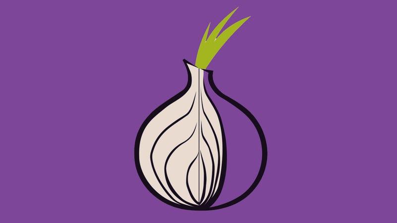 Imagen: Tor