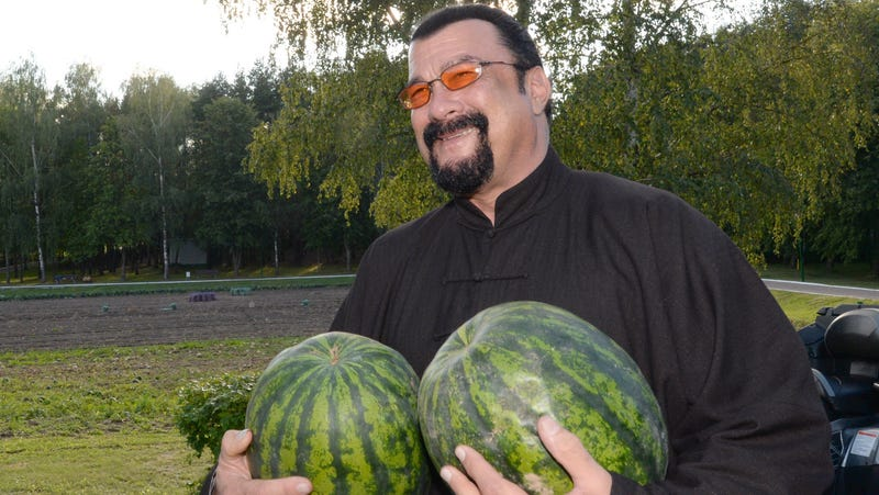 Illustration for article titled Russia names Steven Seagal as its special envoy to the U.S., lucky us