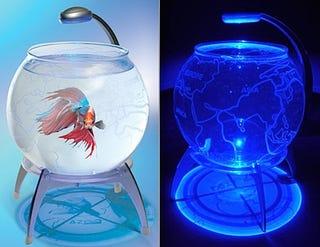 Illustration for article titled LED Earth Globe Aquarium Addresses Poorly Represented Fish Bowl Rave Demographic