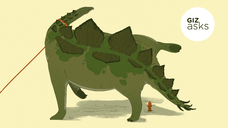 Illustration for article titled Which Extinct Animal Would Have Made the Best Pet?