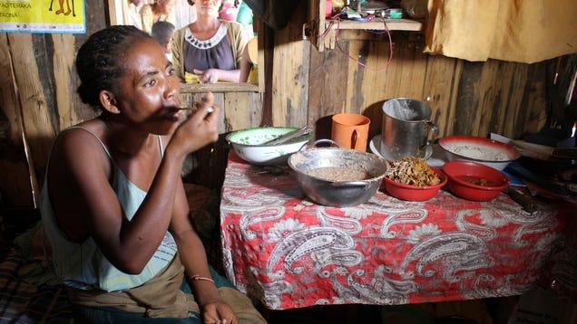 Madagascar Is Suffering Through Catastrophic Famine
