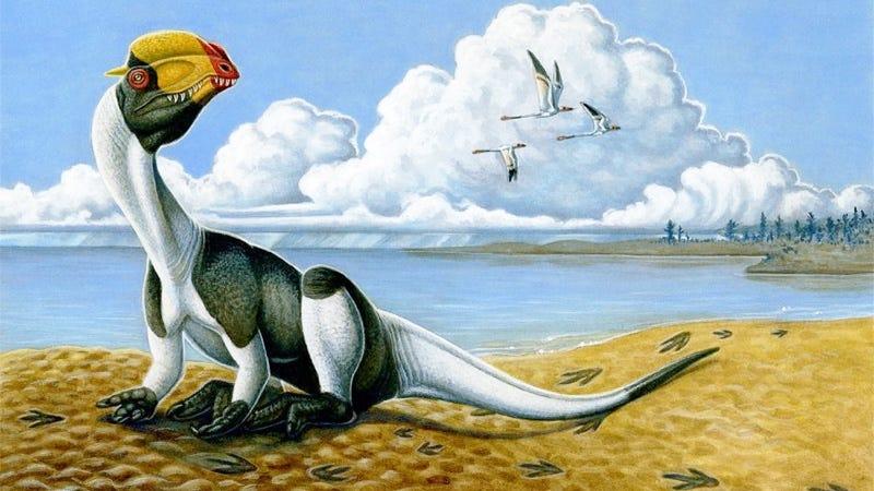 Illustration for article titled Este pobre dinosaurio recibió la paliza más brutal registrada en un fósil —y sobrevivió
