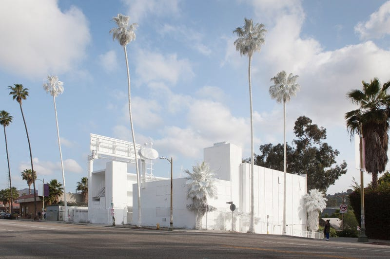 Illustration for article titled Why an Artist Totally Whitewashed This LA Motel—Palm Trees and All