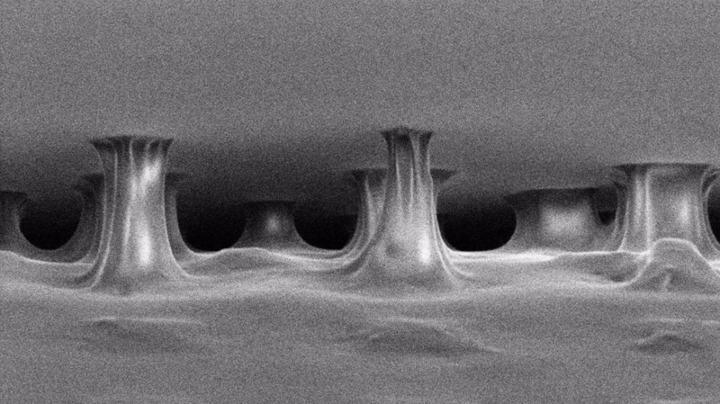 Electron microscope image of pulled sticky tape.