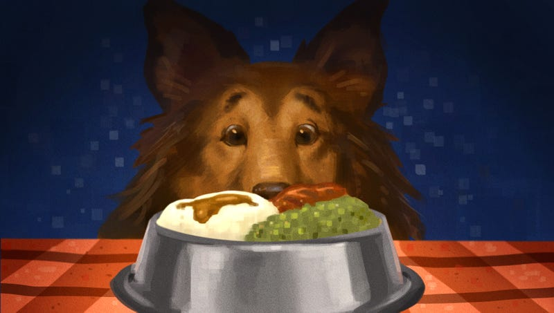 Illustration for article titled What happened when I made meals from a cookbook for dogs