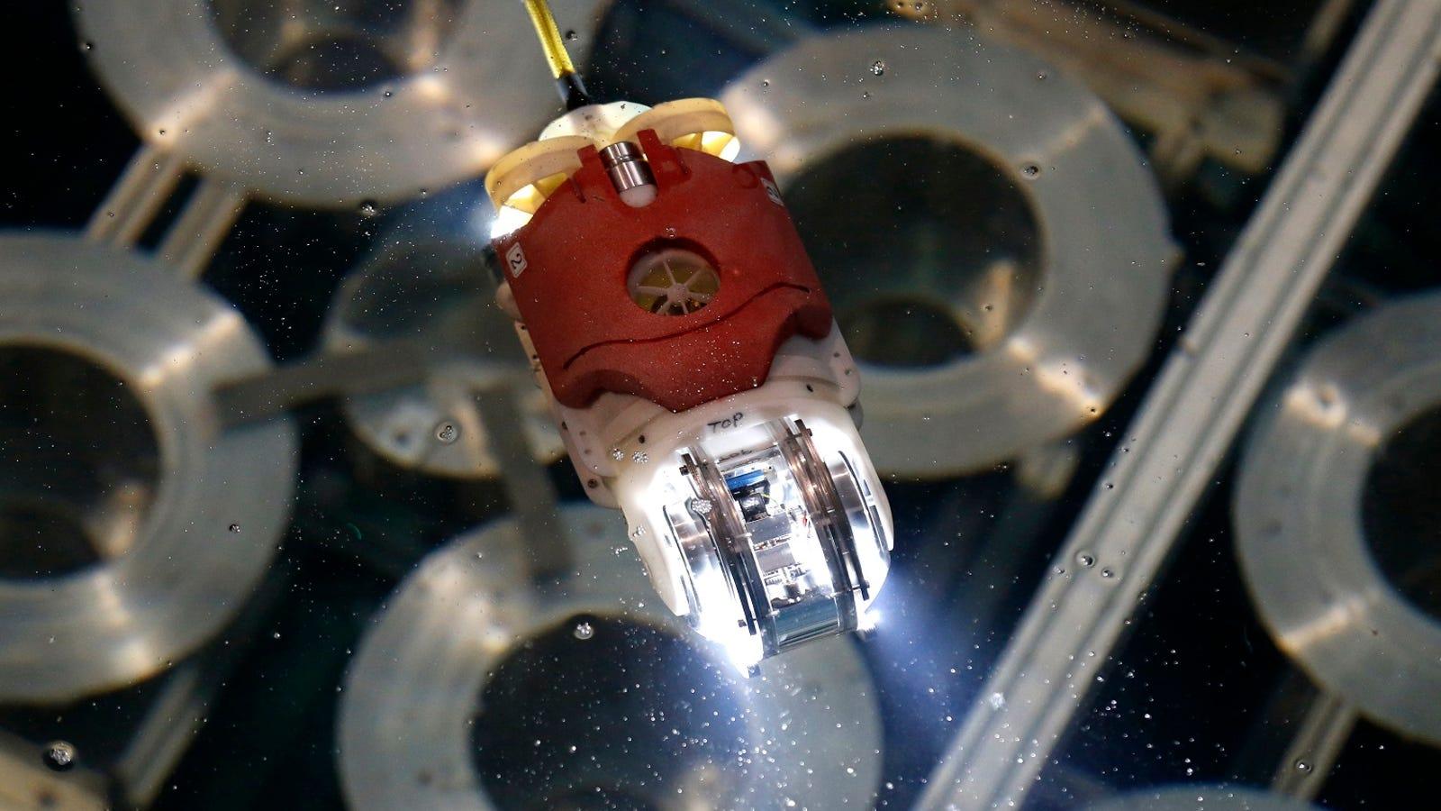 Un robot con forma de pez buscará material radiactivo en los reactores nucleares destruidos de Fukushima