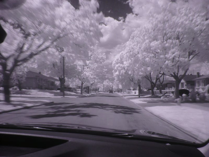 Illustration for article titled Infrared Photography