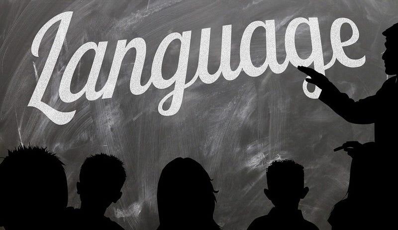 Illustration for article titled Por qué resulta tan difícil aprender un segundo idioma cuanto más mayores nos hacemos