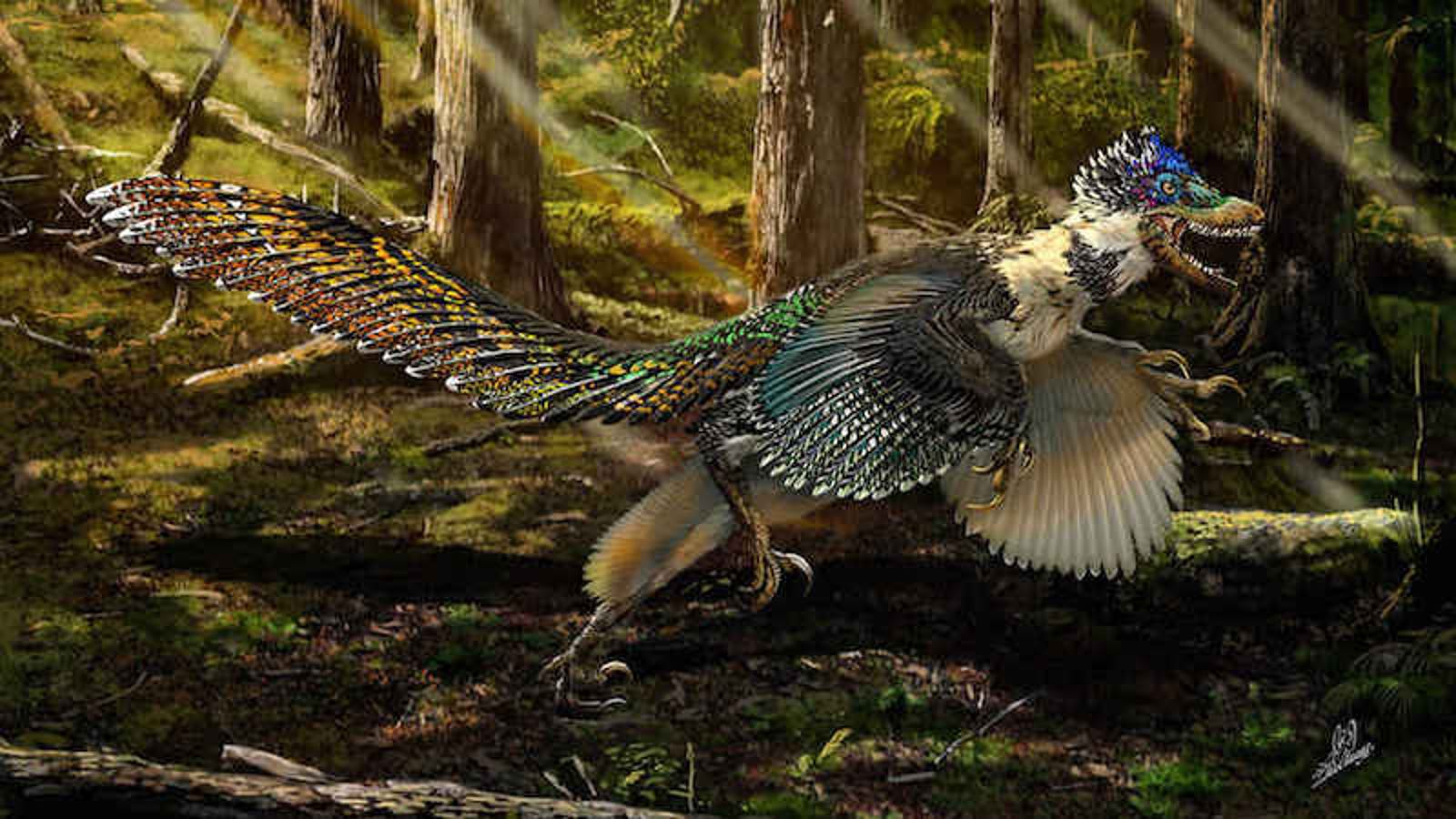 Dinosaurs More Likely Cooed Than Roared