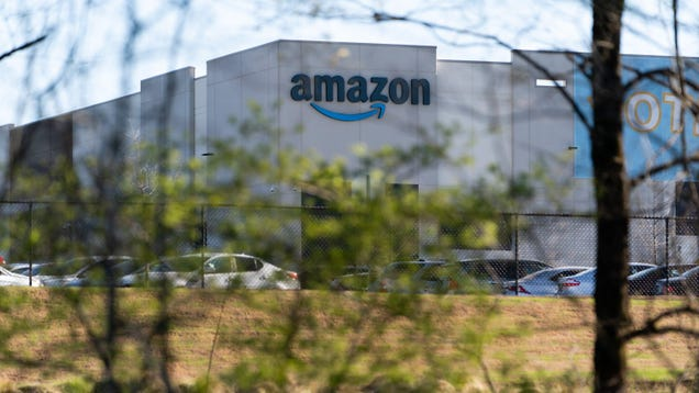 Amazon Workers Should Get Do-Over on Union Vote According to NLRB Official: Report