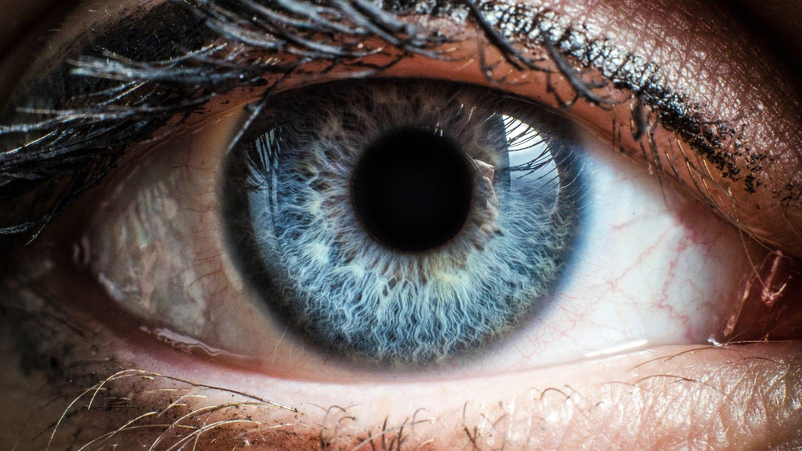 No les pasa nada a tus ojos: cuatro fenómenos visuales muy comunes y ...