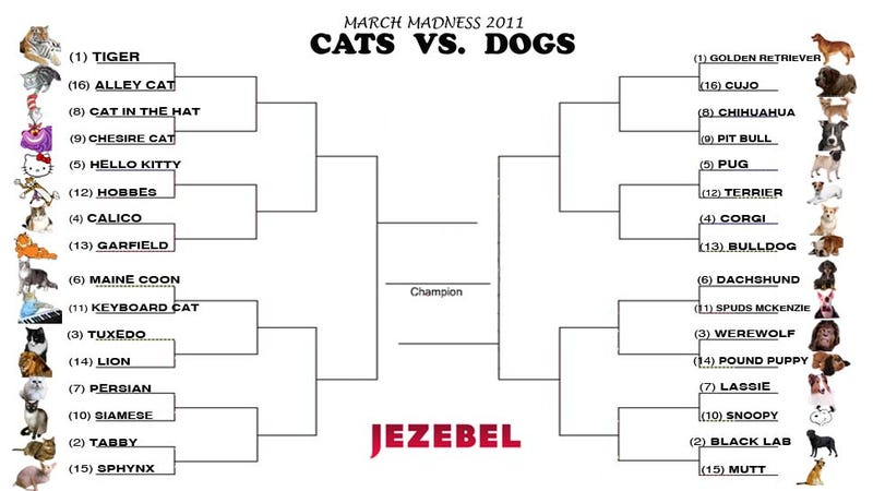 Illustration for article titled Jezebel's March Madness 2011: Cats Vs. Dogs
