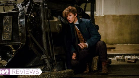 Newt Scamander Is the Biggest Idiot in All of Harry Potter