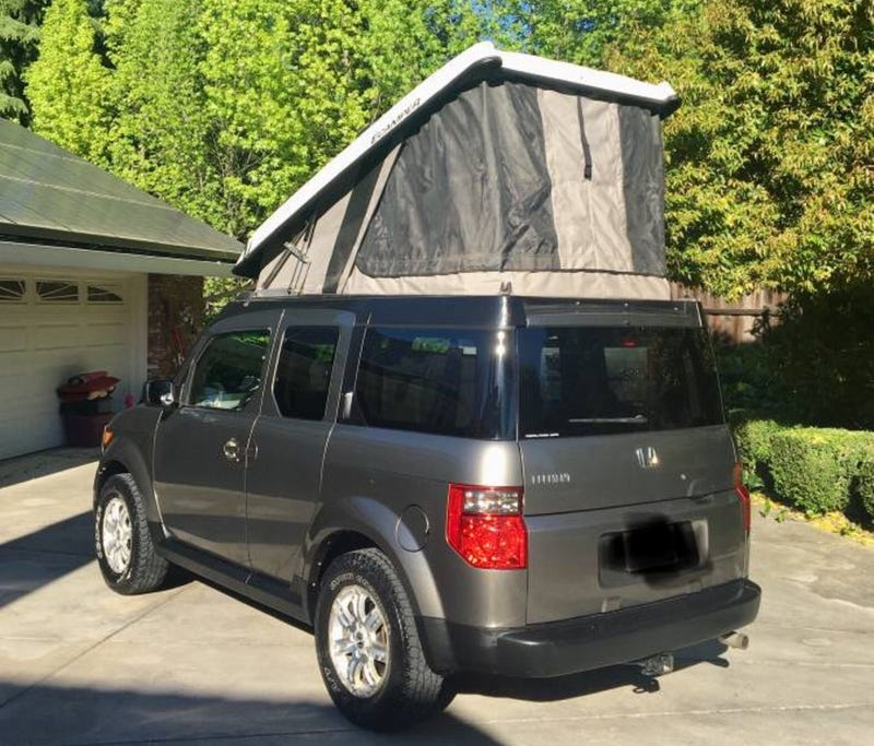 Honda Element Ecamper For Sale >> At 14 500 Will This Pop Top 2008 Honda Element Have You