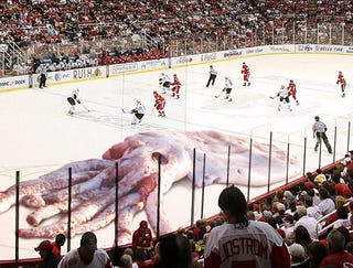 official photos 6a471 2c985 Illustration for article titled Giant Squid Thrown On Ice To Celebrate Red  Wings Hat Trick